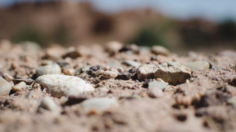 The Essence of Soil – The Backbone of Gardening
